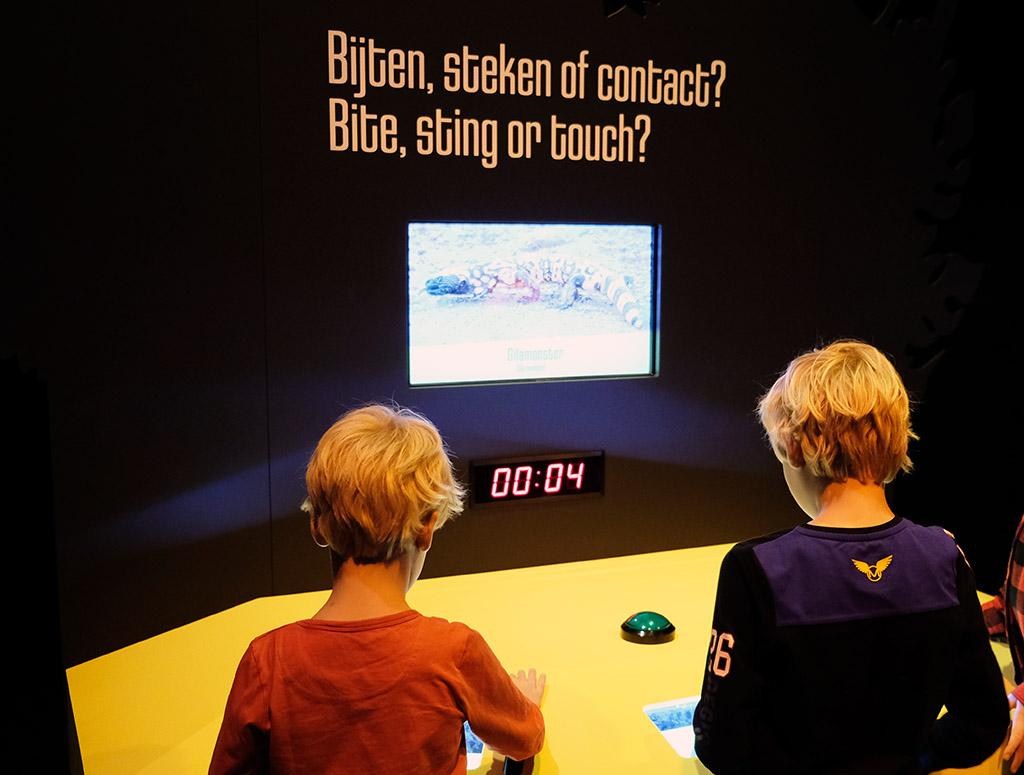 Er zijn veel interactieve elementen in de tentoonstelling GIF! van Naturalis