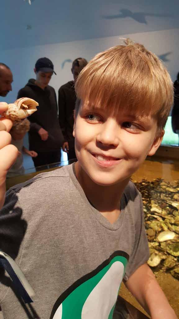 Yay, een echt heremietkreeftje Kindvriendelijke-bezienswaardigheden-aan-de-zuid-westkust-van-Denemarken