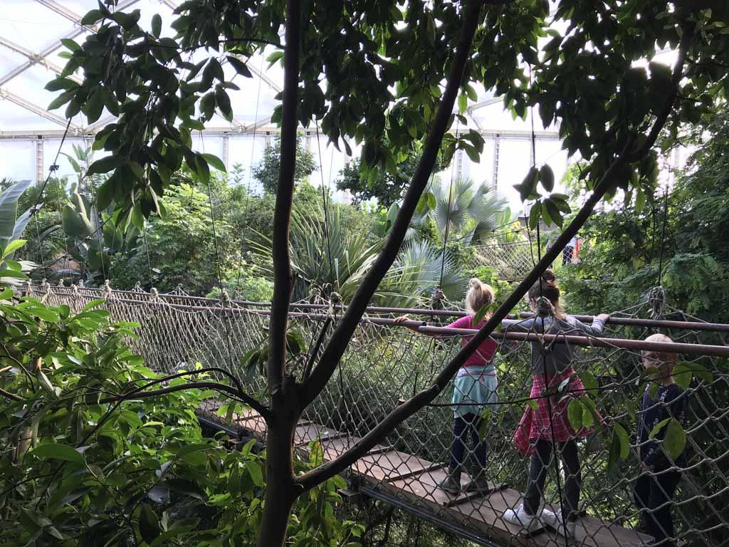 Kindvriendelijke bezienswaardigheden in Saksen Leipzig zoo