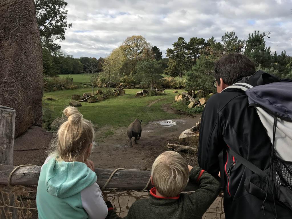 Kindvriendelijke bezienswaardigheden in Saksen Neushoorn
