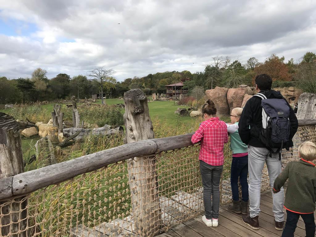Kindvriendelijke bezienswaardigheden in Saksen dierverlblijven