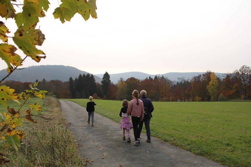 Langs de weilanden op weg naar het bos.