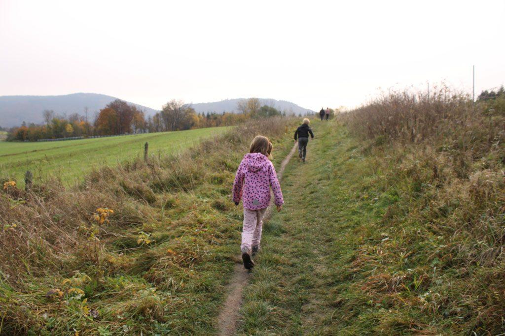 Wandelen in Winterberg door de weilanden en heuvels.