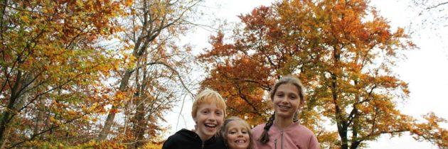 Wandelen in Winterberg met kinderen: dat is volop genieten van de natuur