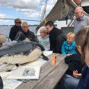 Whalesafari vanuit Middelfart, gaan we bruinvissen zien op de Lillebaelt?