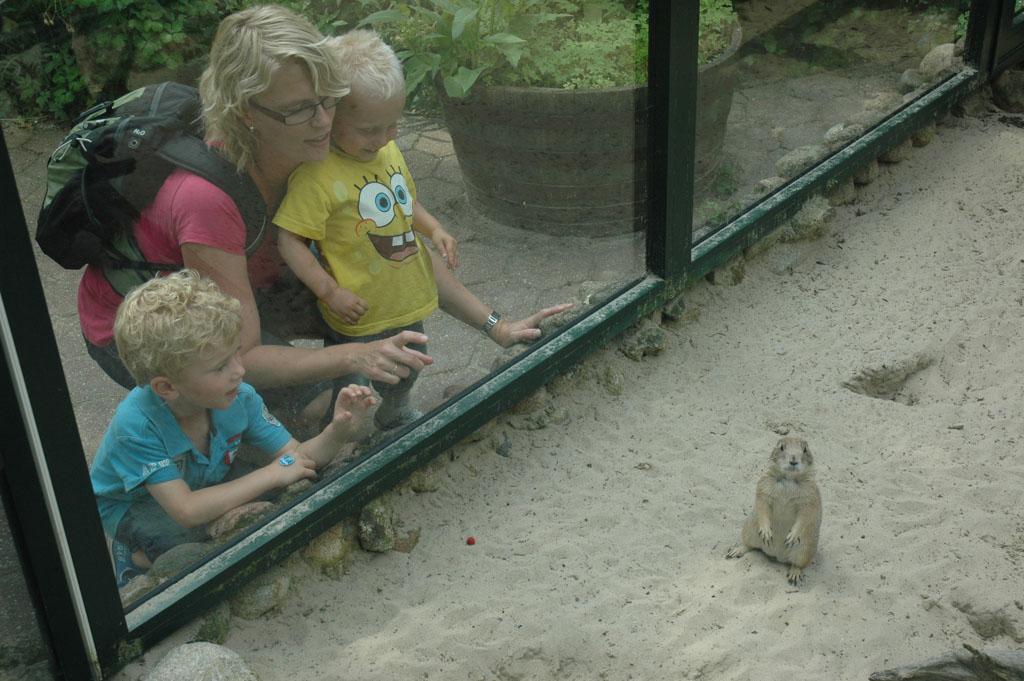 Kabouterland in Exloo, één van de leukste uitjes voor kinderen in Drenthe.