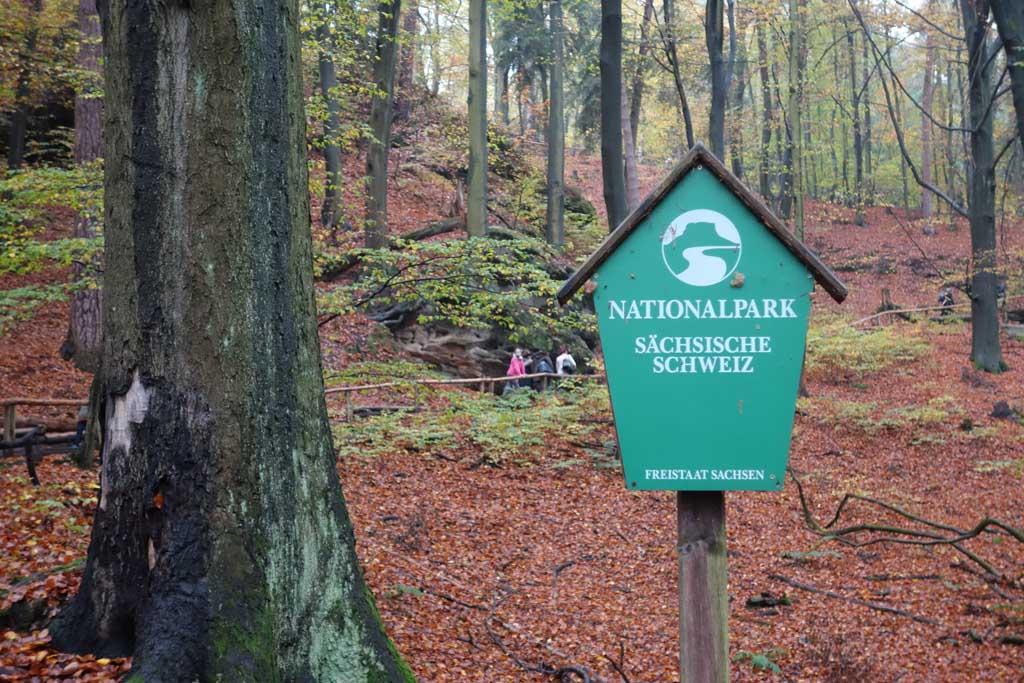 We beginnen de route in het bos waar nog geen rotsen te bekennen zijn.