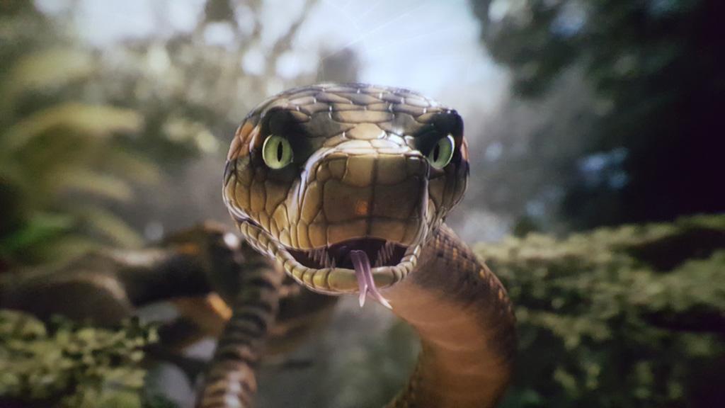 Oog in oog met een slang in het oerwoud.