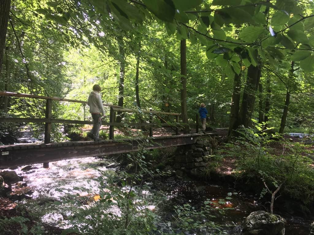 wandelen in de Belgische Ardennen met kinderen