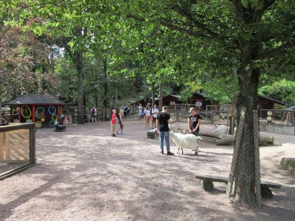 In het stadspark is ook een kinderboerderij