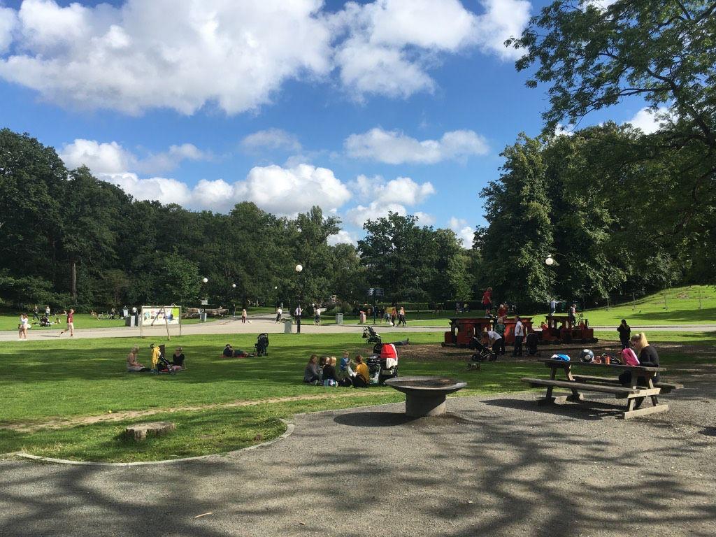 Het Slottsskogen stadspark is heerlijk ruim met veel gras