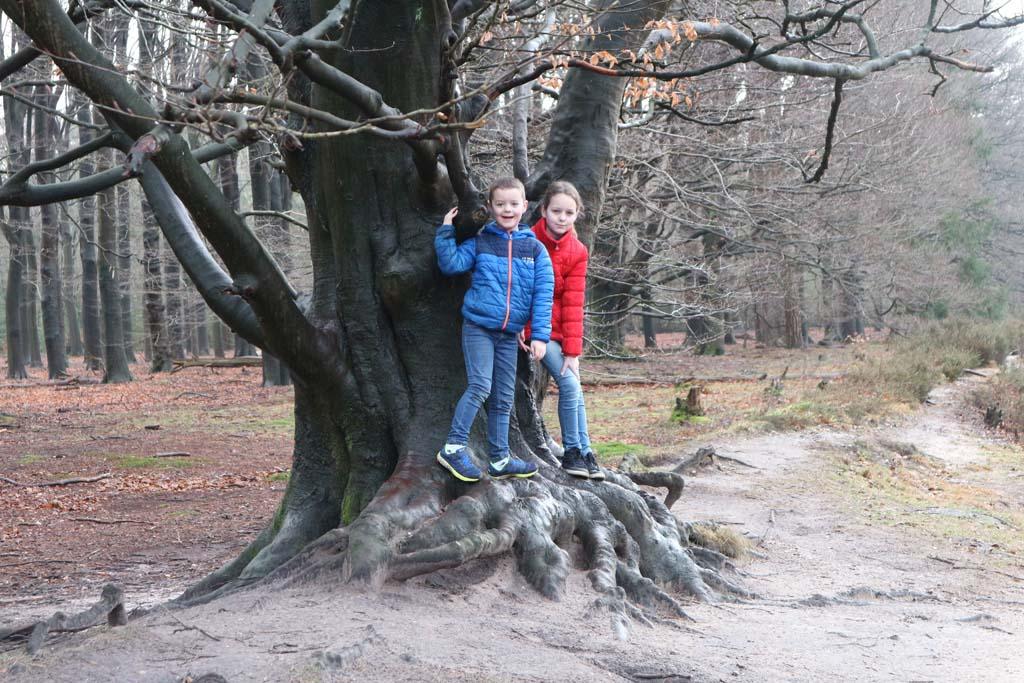 """""""Ik noem deze boom 'Worteltje'"""" zegt Camiel."""