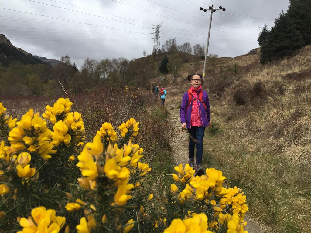 wandelen in Schotland met kinderen brem