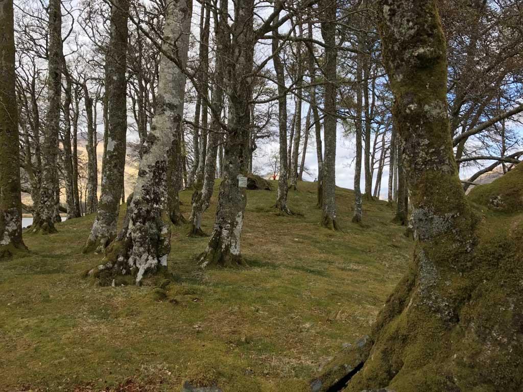 wandelen in Schotland met kinderen vermaken