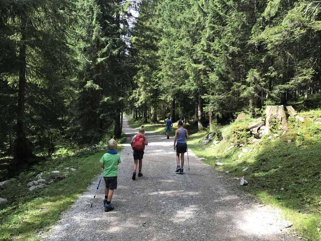 wandelen rondom de wolfgangsee bossen