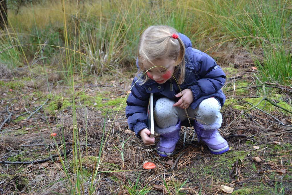 Het kabouterpad is een heel leuk en leerzaam uitje voor peuters. (Foto: Daphne)