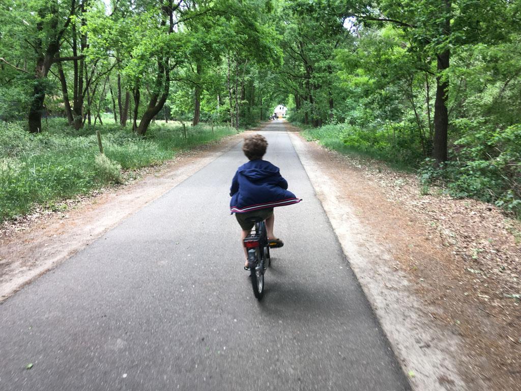 We fietsen en wandelen heel wat af in de heerlijke Staatsbossen van St. Anthonis.