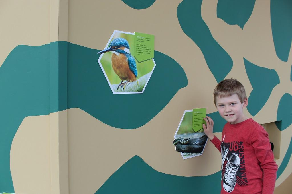 Een hoekje in het bezoekerscentrum is voor natuur op en rond de Grebbelinie.