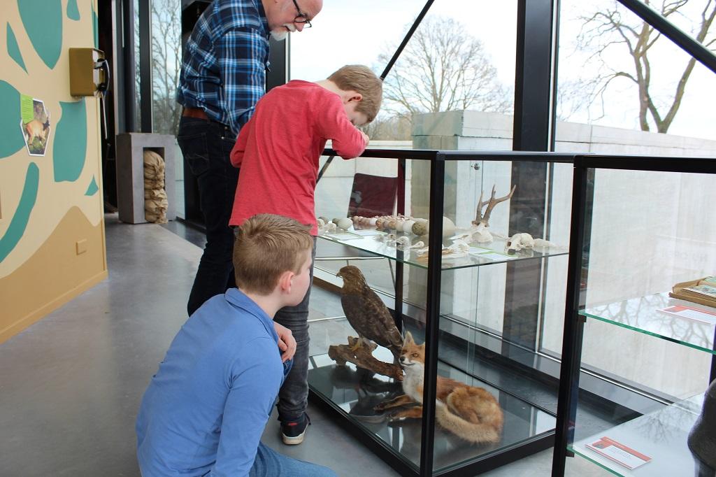 De vitrinekasten over de natuur worden regelmatig opnieuw gevuld.