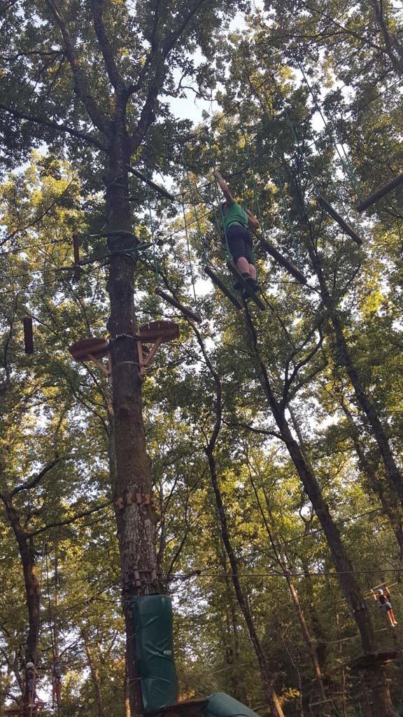 Ook mama klimt de hoogste bomen in.