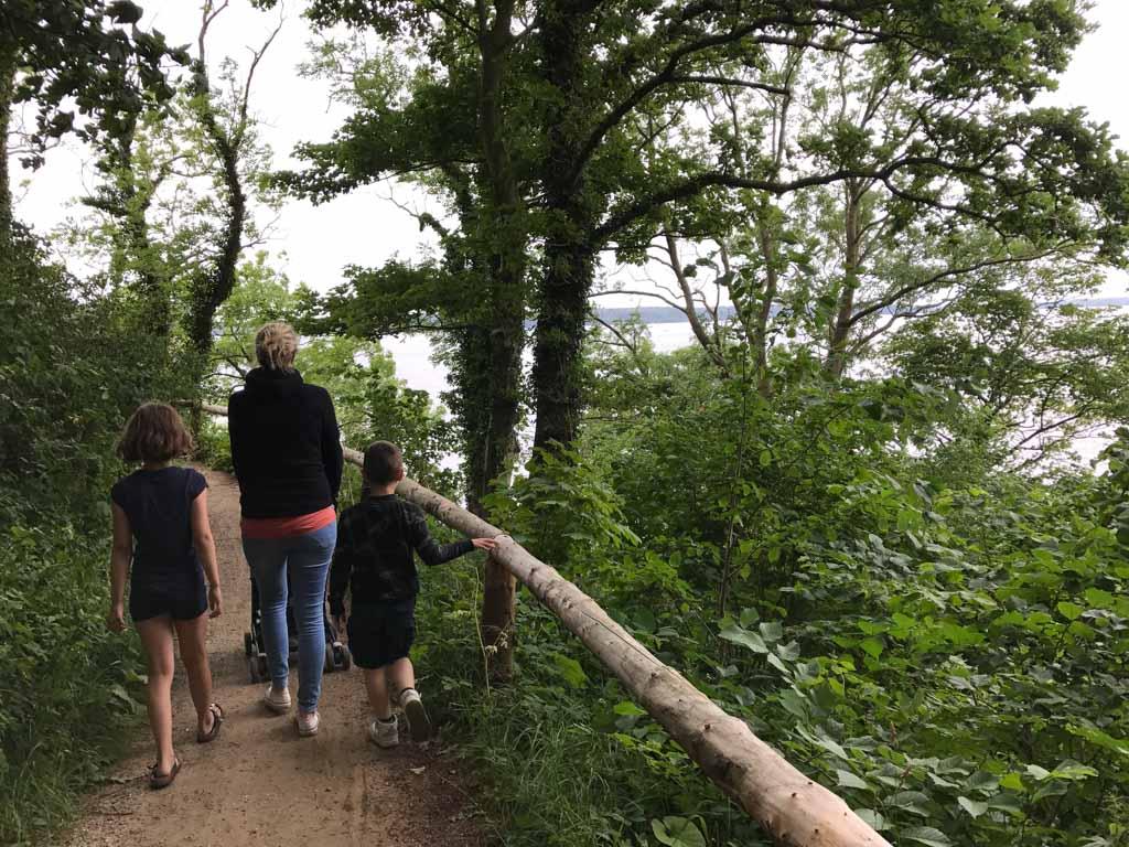 Tussen de bomen door zien we het water van de Lillebaelt.
