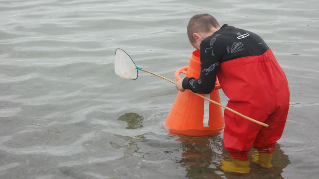Op zoek naar dieren in het water.