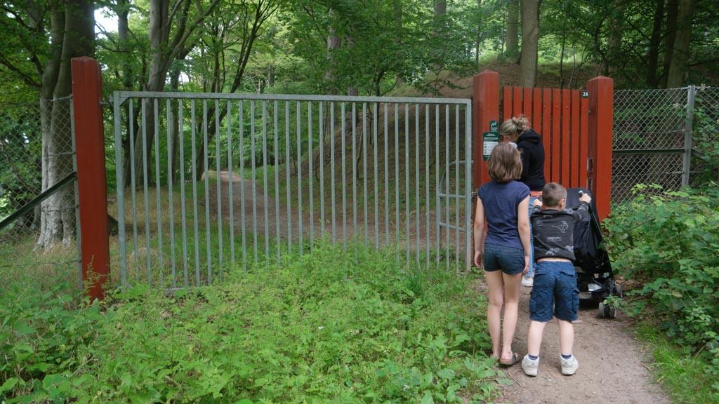 Het gedeelte waar de herten te vinden zijn is afgeschermd met een hek en wildroosters.