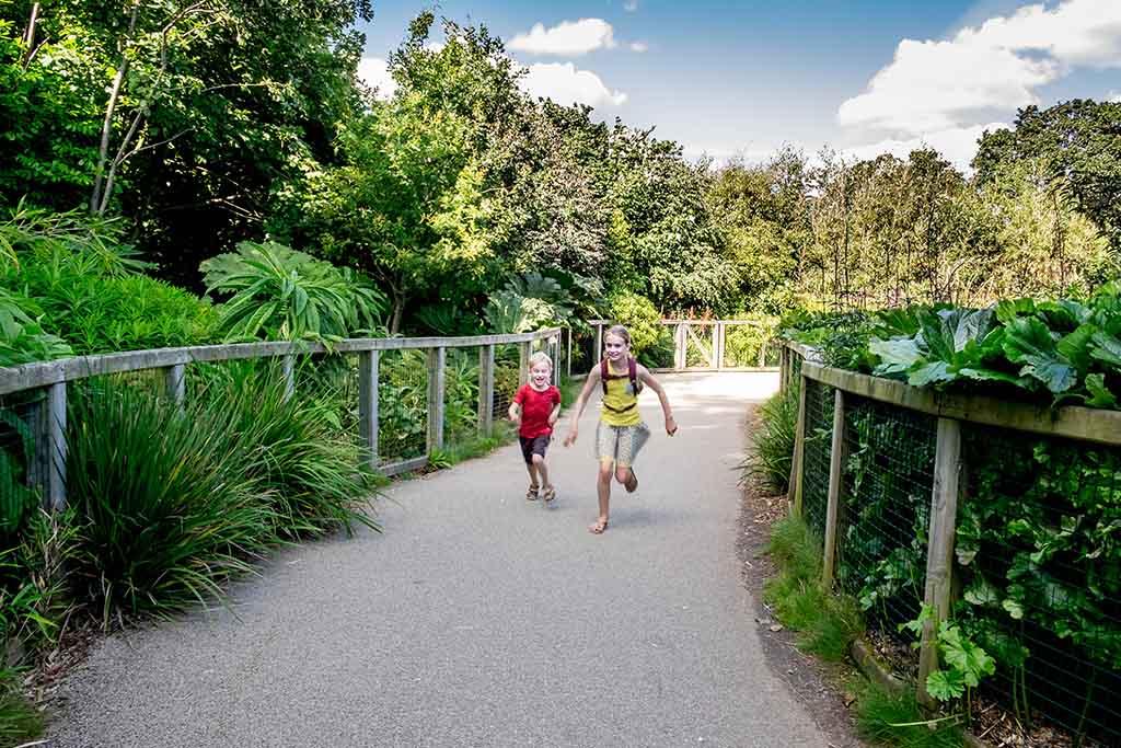 Ondanks dat er niet overal dierenverblijven zijn, is het leuk wandelen in de Dublin Zoo