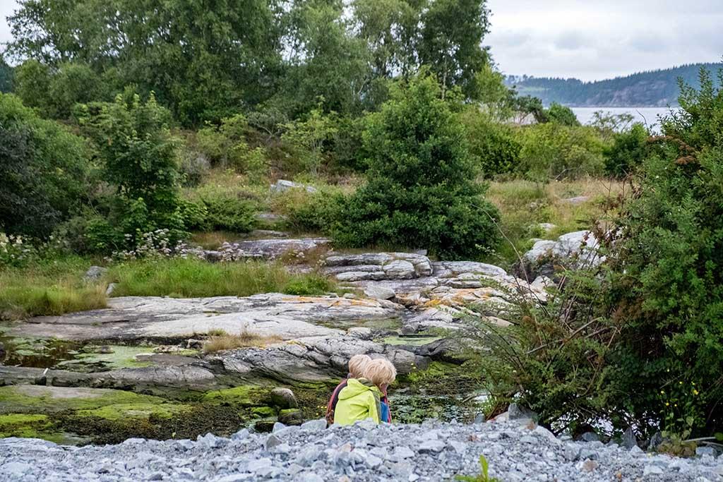 Krabben en mooie stenen zoeken tussen de rotsen op het eiland Rennesøy
