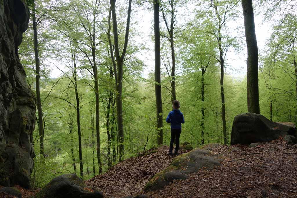 Vanaf de Landalparken in de Eifel zijn er mooie wandelingen te maken (foto: Fieke).