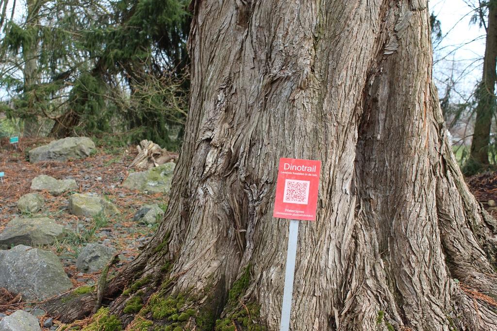 De dino-trail geeft meer informatie via QR-codes.