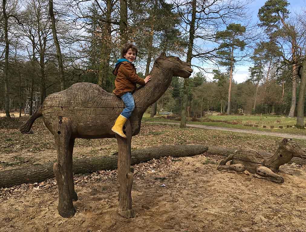 Mats vervolgt de reis op een kameel