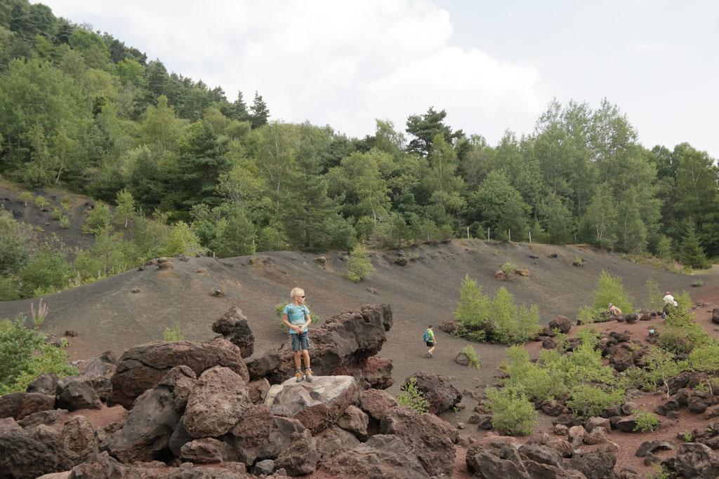 Aan de voet van de Puy de la Vache ligt een steengroeve met brokken lavastenen.