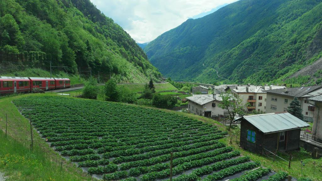 Aan de zuidkant van de Alpen ziet het er toch net iets anders uit dan aan de noordkant.