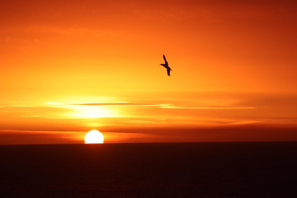 De zon komt mooi op boven zee.