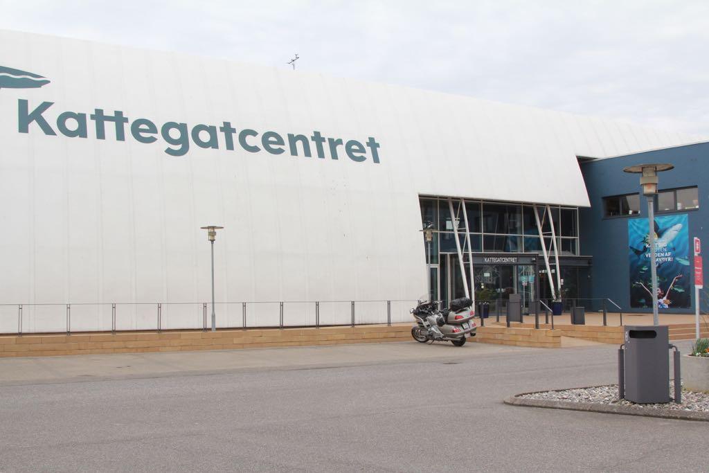 Welkom in het Kattegatcentret: het mooiste aquarium van Denemarken!