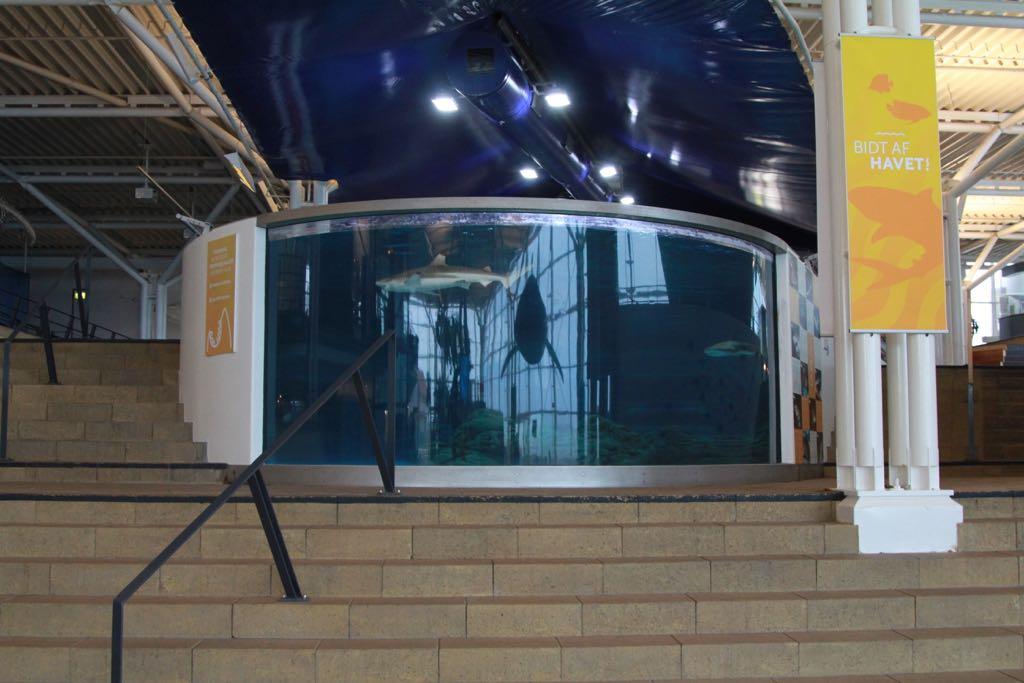 Bij binnenkomst wordt je aandacht meteen naar het grote aquarium getrokken.