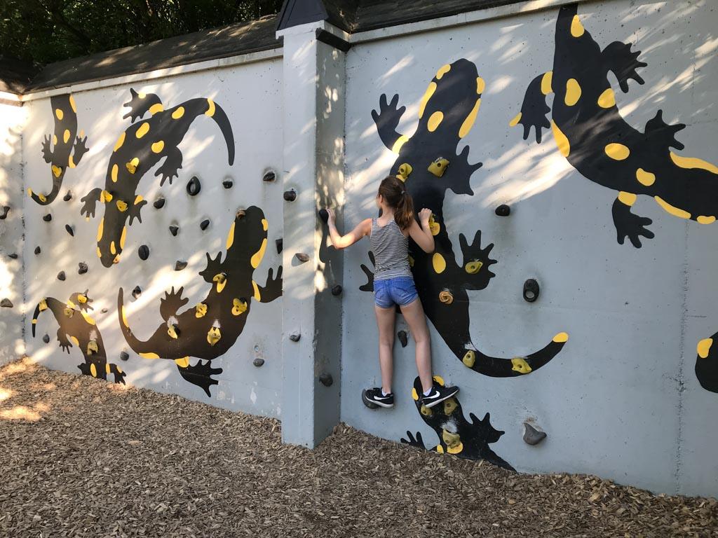 Leuke klimwand voor kinderen.