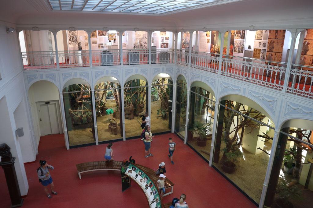 Aan het Apenhuis is te zien dat het een oude dierentuin is, maar wel een die met de tijd mee is gegaan.