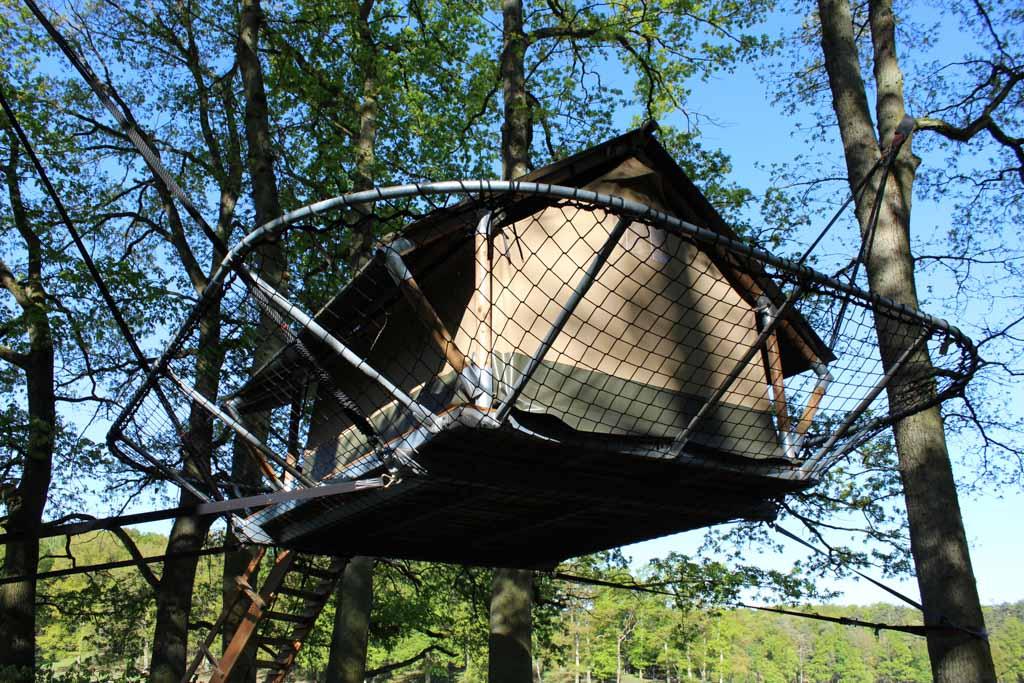 Als grote vogelnesten hangen de Tree Tents in de bomen.