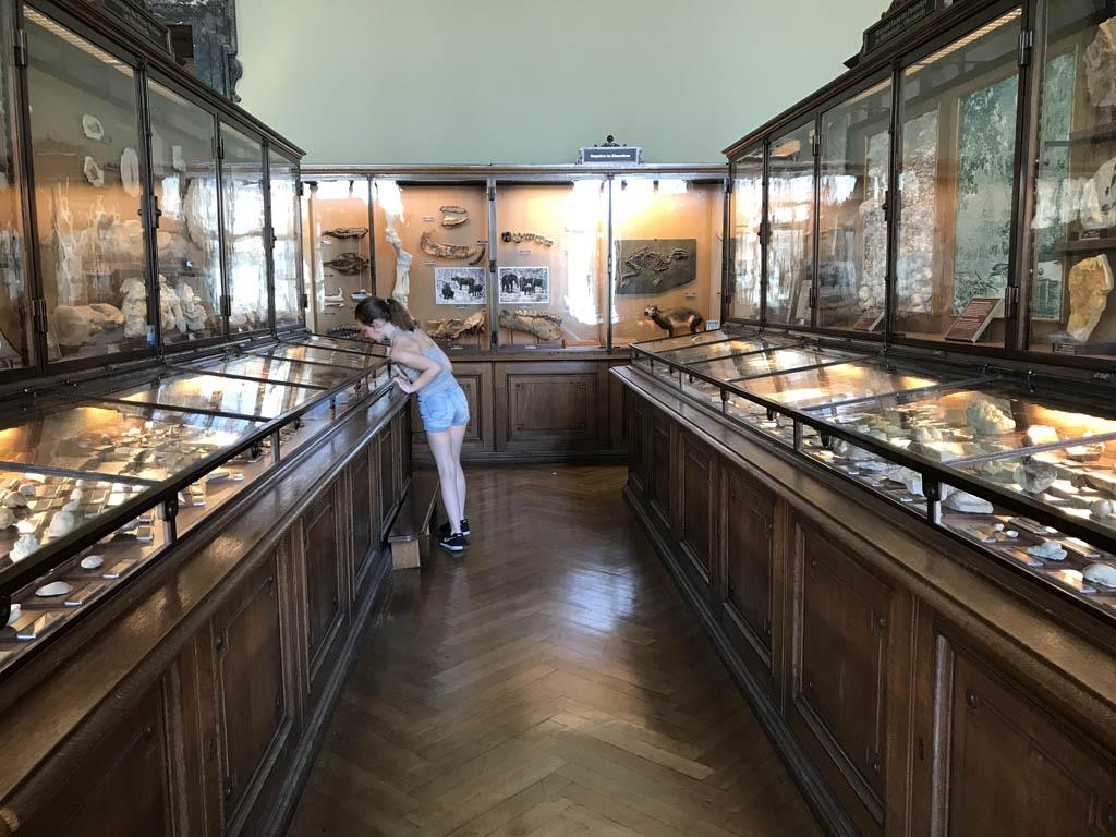 Zalen en vitrines vol met edelstenen en andere gesteente.