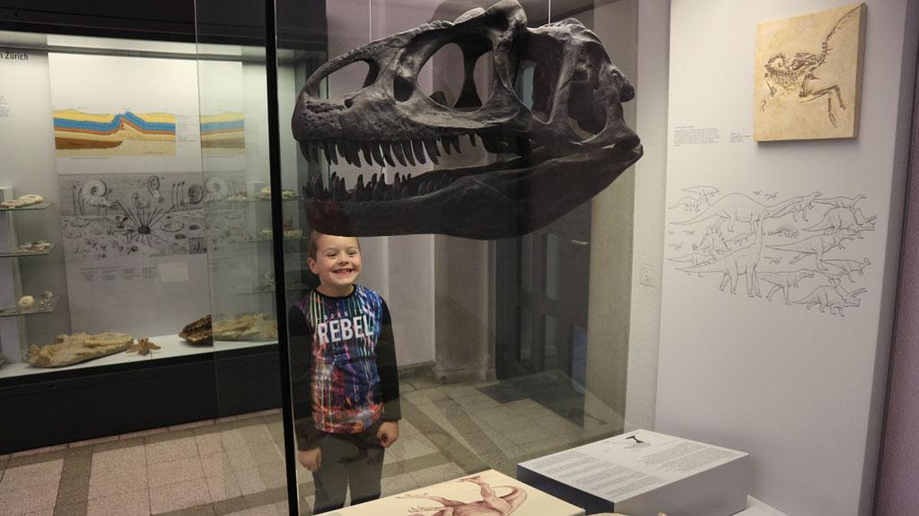 Grote grijns bij het zien van een skelethoofd van een dino.