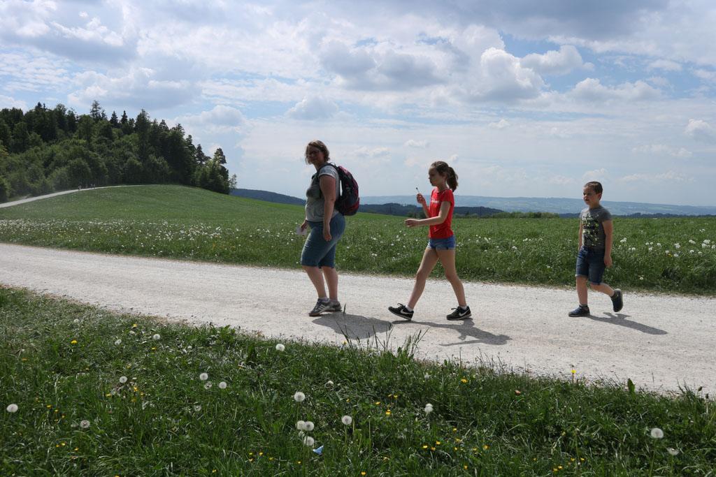 Wandelen in de zon op een pad dat stiekem toch omhoog gaat.