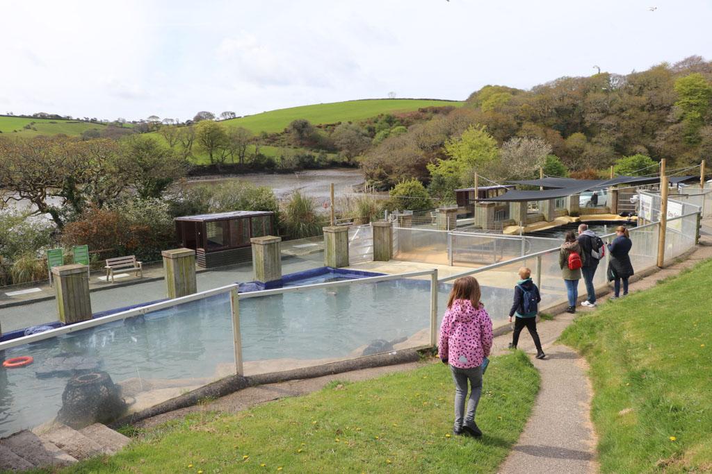 De zeehondenopvang ligt heel mooi in het groene landschap van Cornwall.