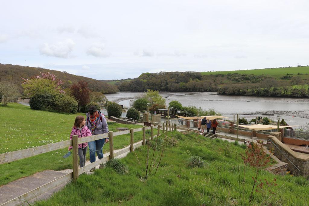 Bij Cornish Seal Sanctuary in Cornwall heb je wel de ruimte!