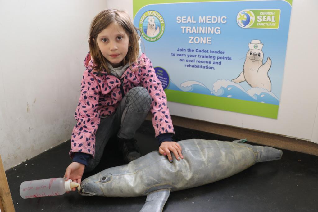 Zieke zeehonden beter maken, dat zou ze wel echt willen doen.