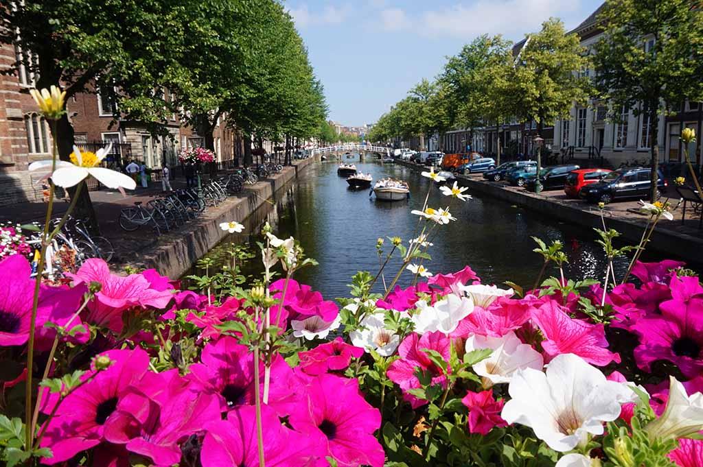 De met bloemen behangen bruggen maken de grachten nog mooier