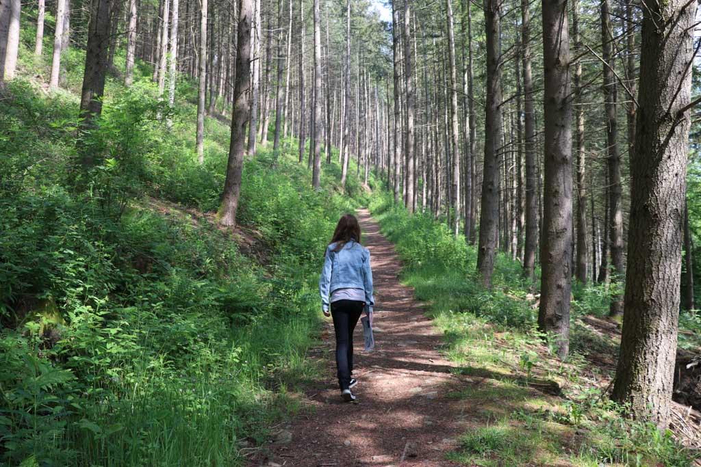 Je loopt vanaf de camping zo het bos in.