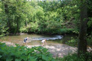 Het kleine riviertje bij de camping heeft een onweerstaanbare aantrekkingskracht op onze kinderen.