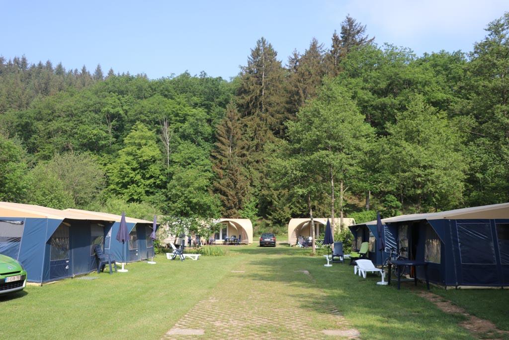Wat een groene camping!